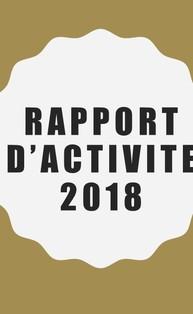 Rapport d%e2%80%99activite 2018