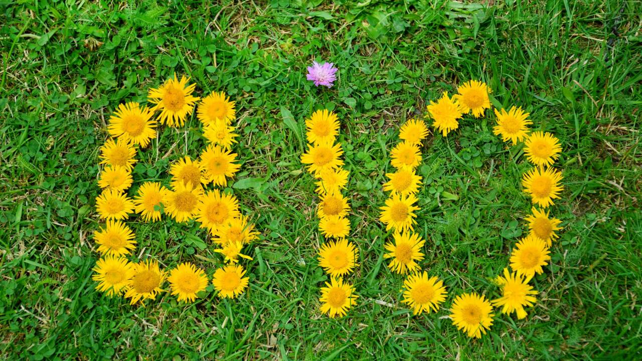 bio en fleurs.jpg