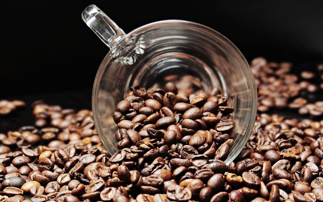 Le Ninja Coffee Bar est la machine à café ultime