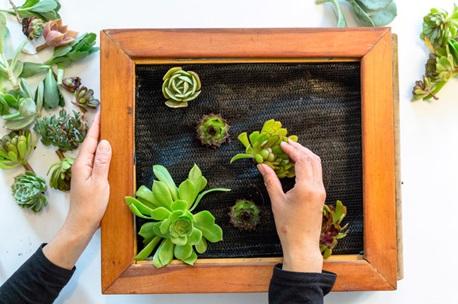 création tableau végétal