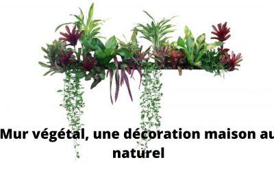 Mur végétal, sa fabrication et son entretien en intérieur comme en extérieur