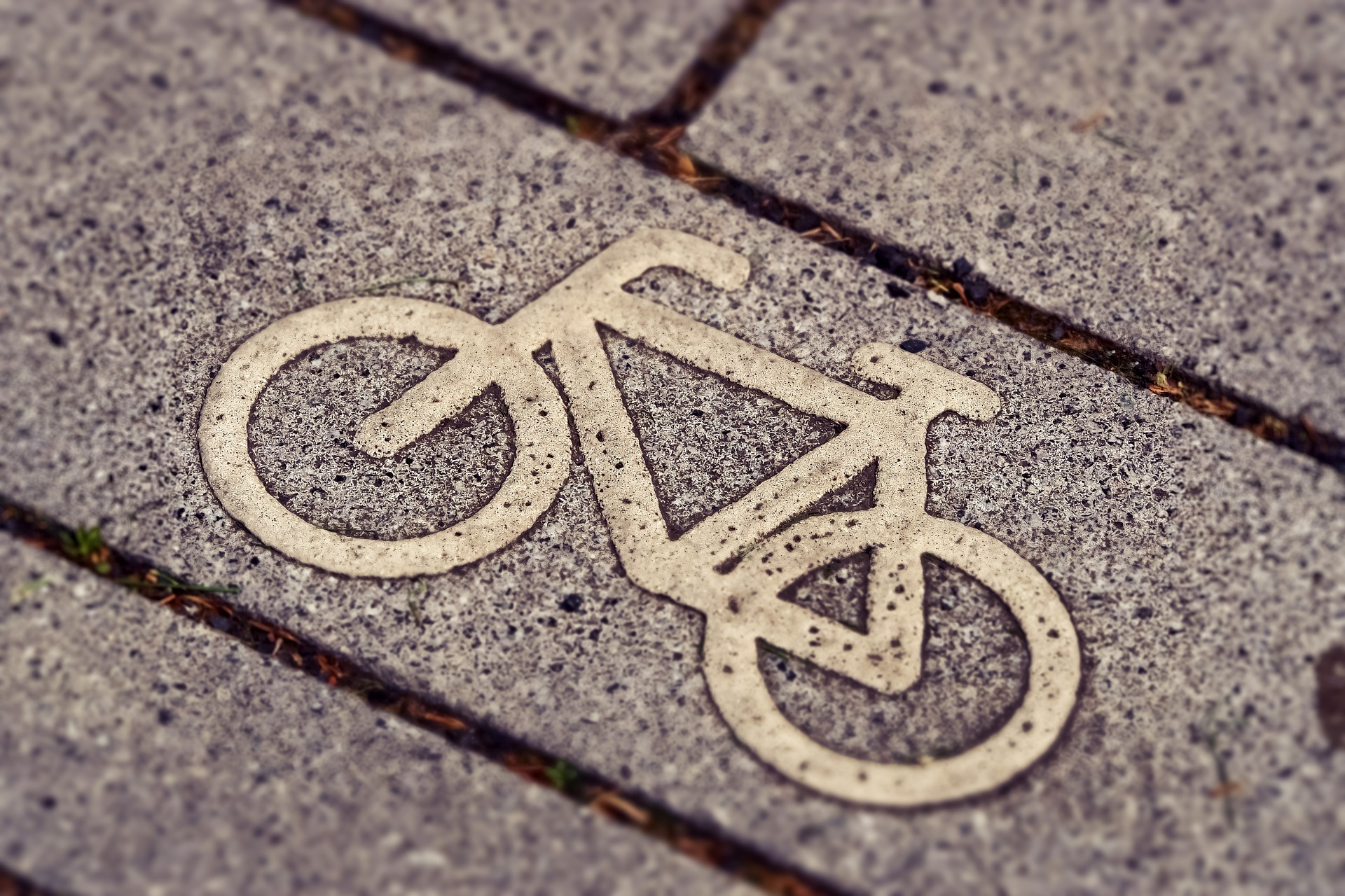 bicycle-path-3444914_1920