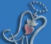 Logo CARDENAL SPINOLA