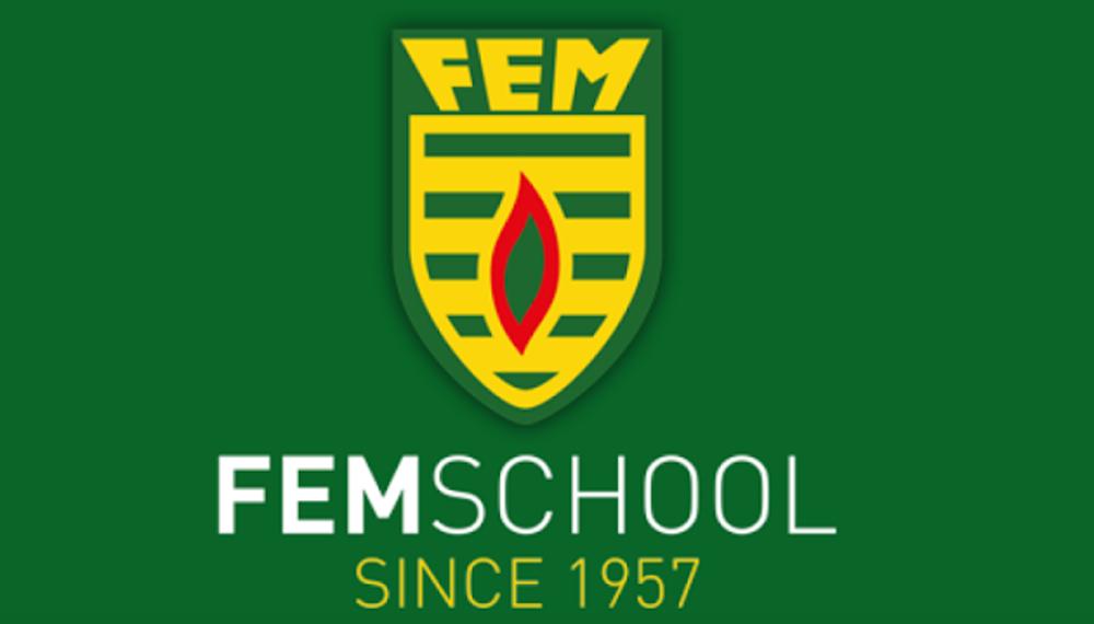 Logo FEM School