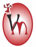 Logo VIRGEN MILAGROSA