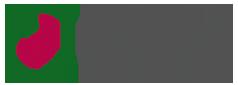 Logo ANTANES SCHOOL