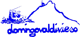 Logo DOMINGO VALDIVIESO