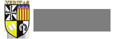 Logo SAN VICENTE FERRER-DOMINICOS