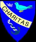 Logo PATROCINIO SAN JOSE