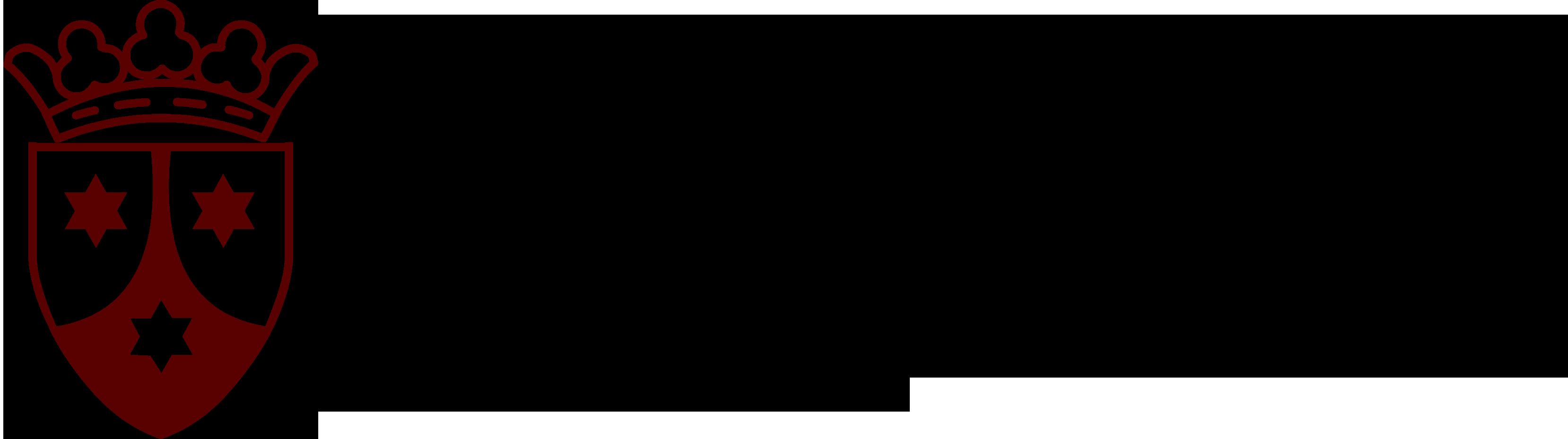 Logo Mare de Déu del Carme