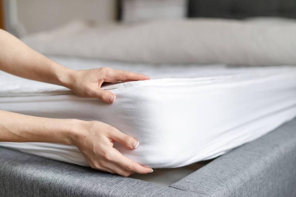 Comment savoir si on a des punaises de lit