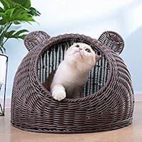 antiacaros para gatos