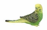 antiacaros para aves