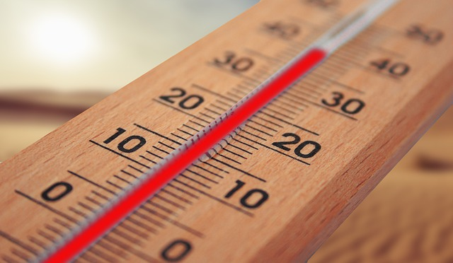 Customer data shared by a smart thermometer