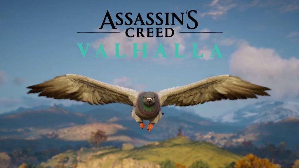 Paloma Assassin´s Creed Valhalla