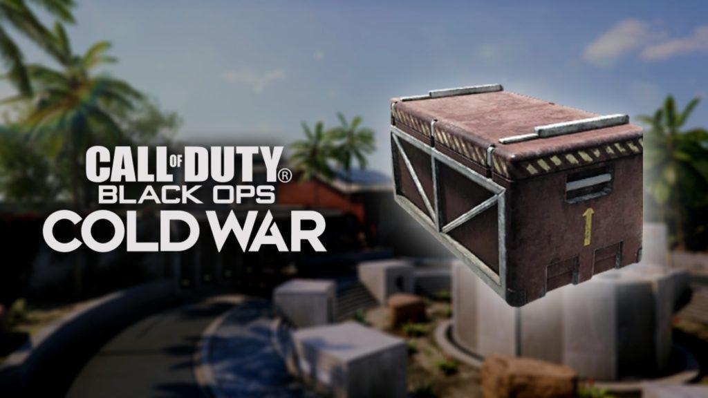 paquete de ayuda black ops cold war