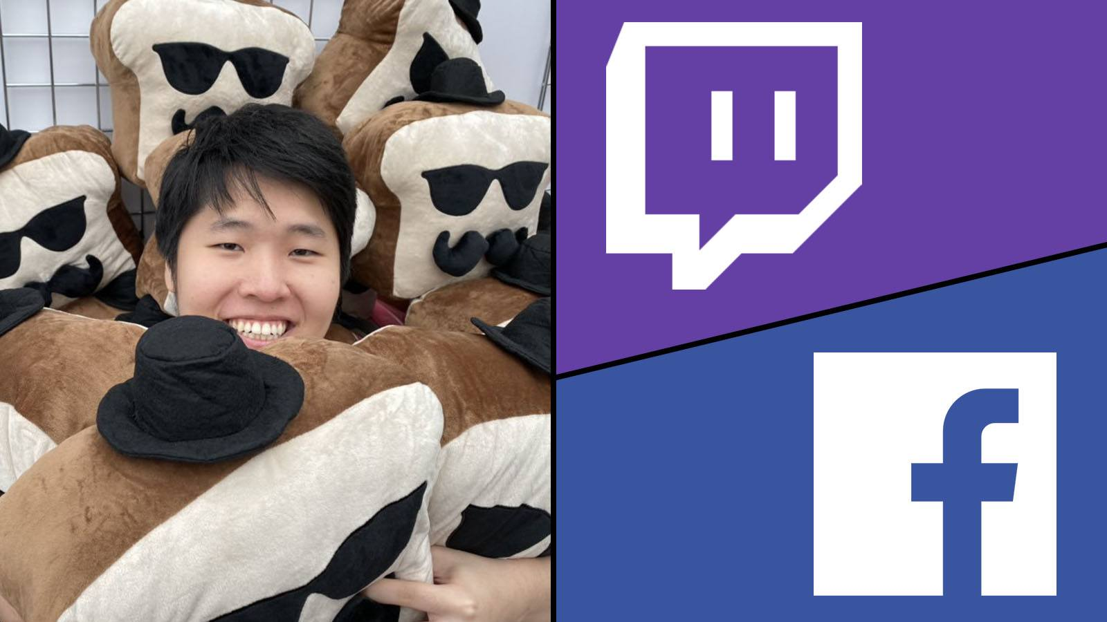 Disguised Toast - Twitch - Facebook