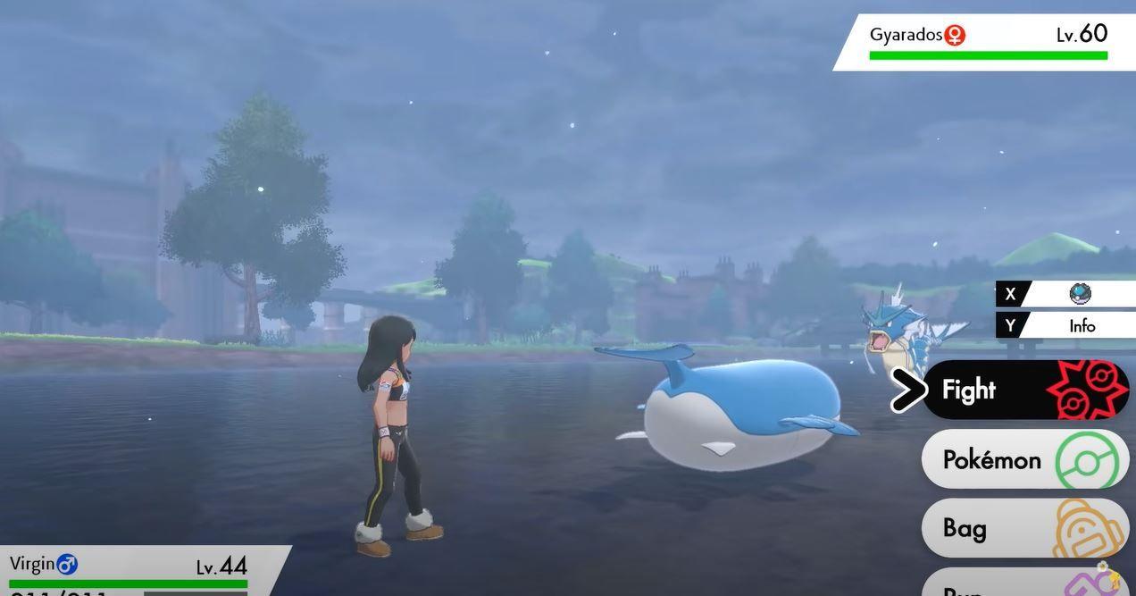 Pokémon Epée Bouclier Wailmer échelle