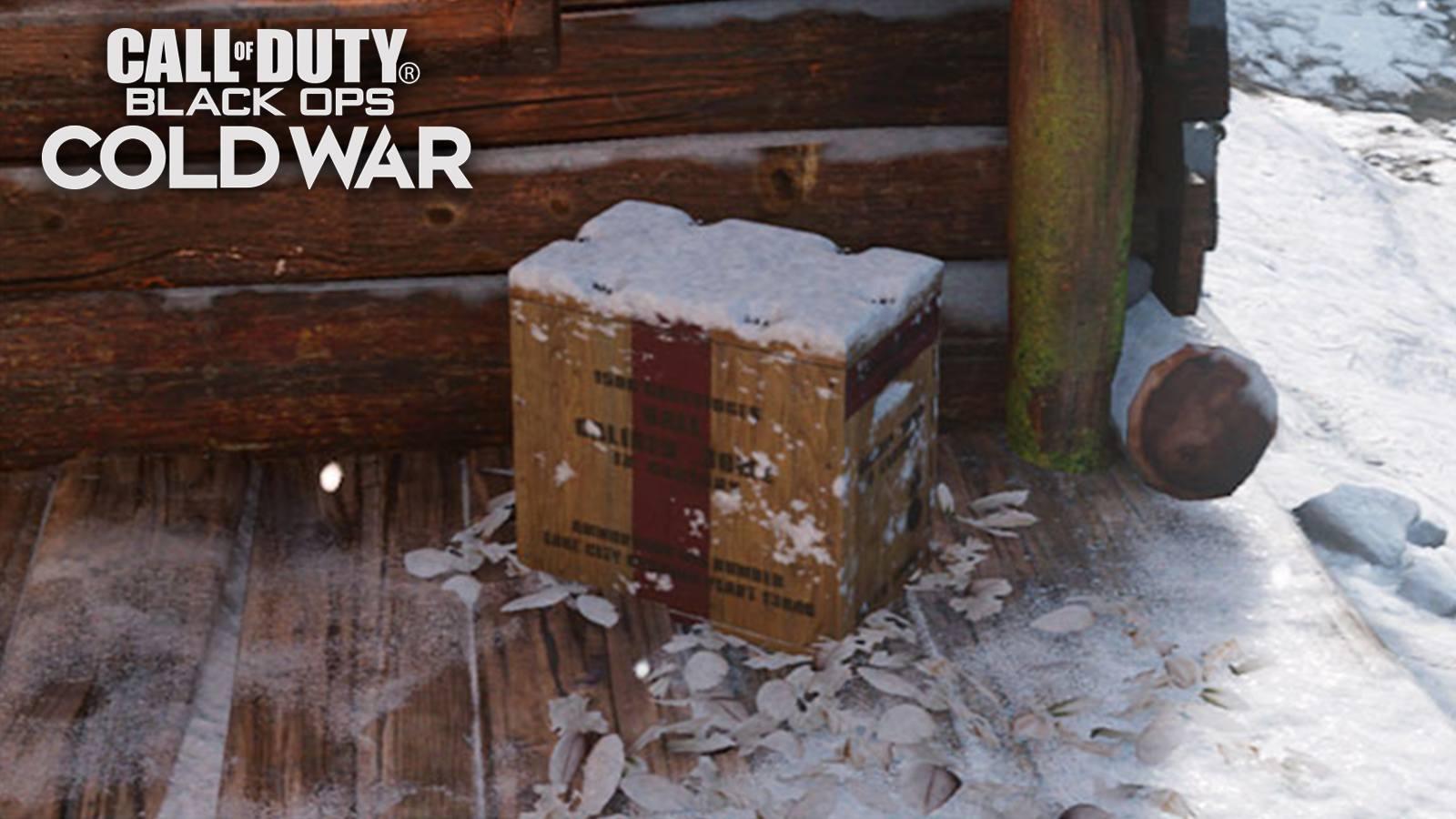 Prop Hunt Call of Duty Black Ops Cold War