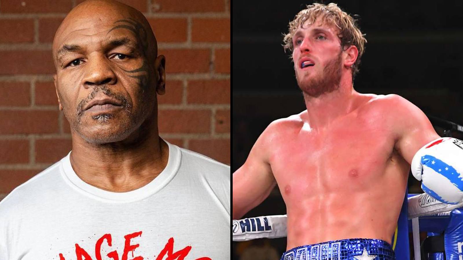 Mike Tyson combat Logan Paul vs Floyd Mayweather