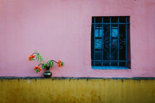 Tour_d_horizon_:_Les_meilleures_couleurs_de_peinture_rose_terreux