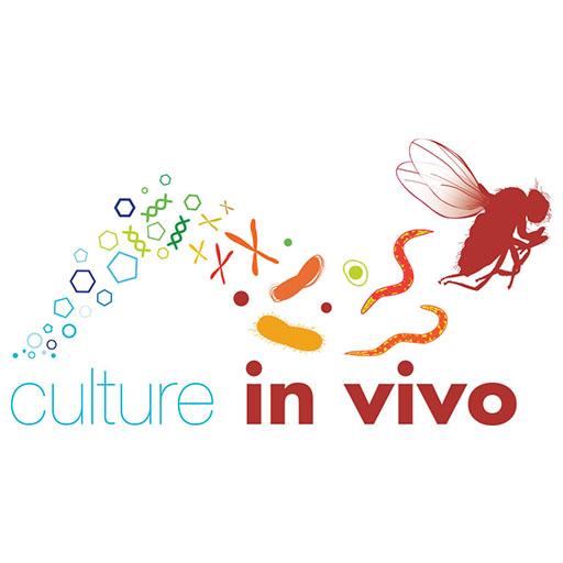 culture in vivo
