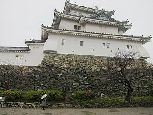 Tomogashima1