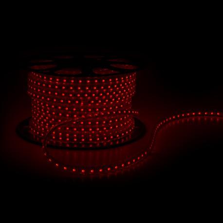 Tira de 60 LEDs/M 220VAC SMD5050 IP65 RGB (Por Metros)
