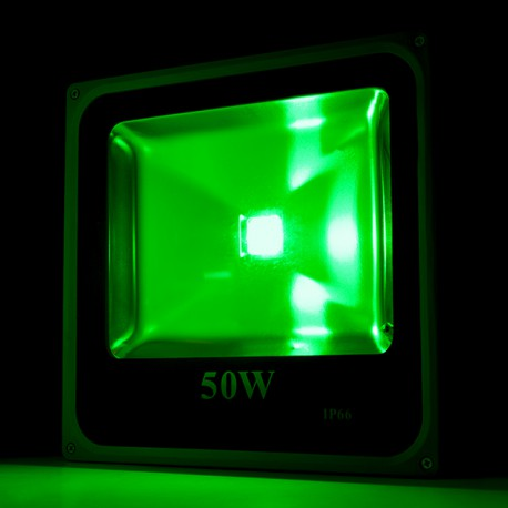 Foco Proyector de LEDs para Exterior ECOLINE 50W RGB con Mando a Distancia