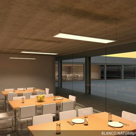 ECOLINE LED Panel 1200x300x12mm 36W 2270Lm 30.000H