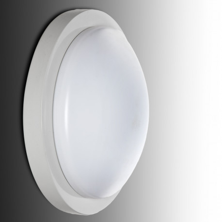Ceiling Light LED Surface Mounted Detector