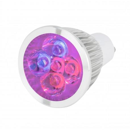 70b426a342c ... Sinine; Lámpara de 5 LEDs GU10 para Cultivo y Aquarios 10W Rojo/Azul ...