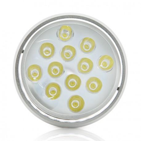 Foco Downlight de LEDs ECOLINE Circular 9W (copy) (copy) (copy) (copy) (copy) (copy) (copy)