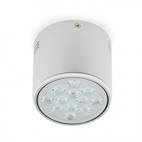 LED Surface Mounted Downlight Aluminium 12W 1200Lm 30.000H