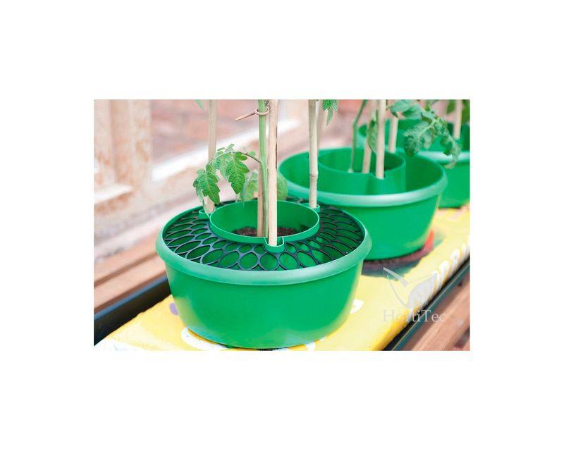 rejilla plant halos en maceta