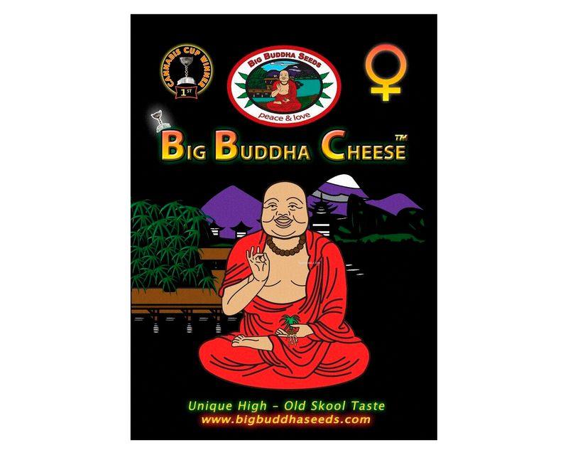 310809_big_buddha_cheese.jpg