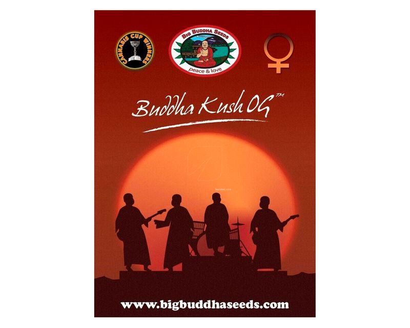 310814_buddha_kush.jpg