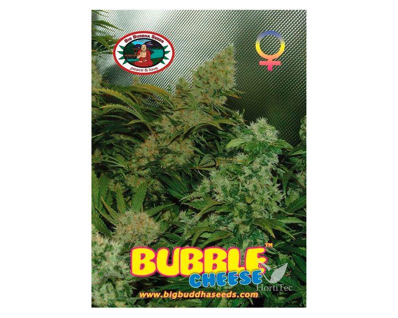 310825-bubble-cheese.jpg