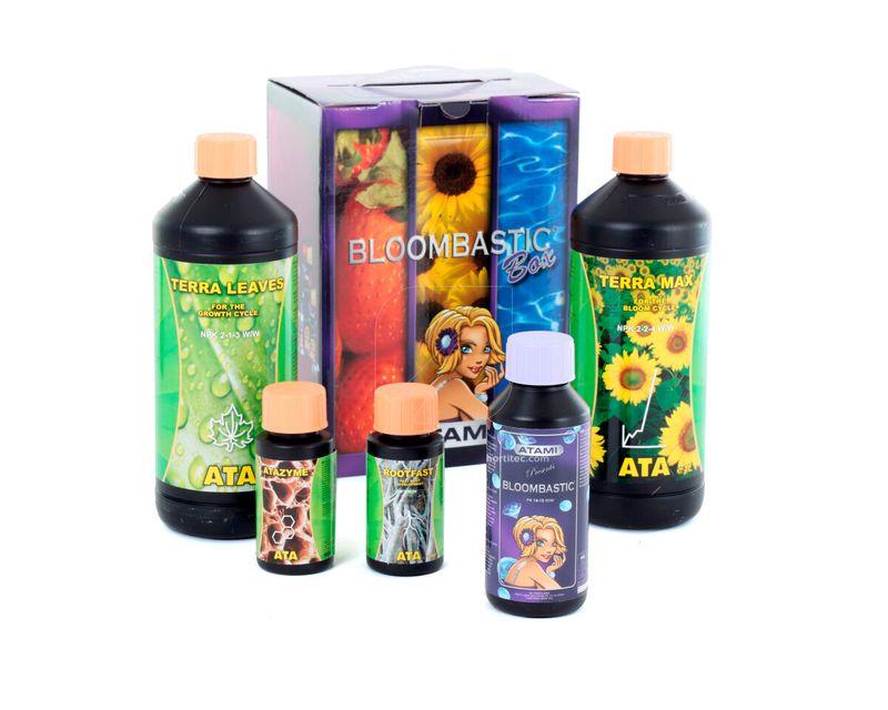 721060_ata-terra-bloombastic-box.jpg