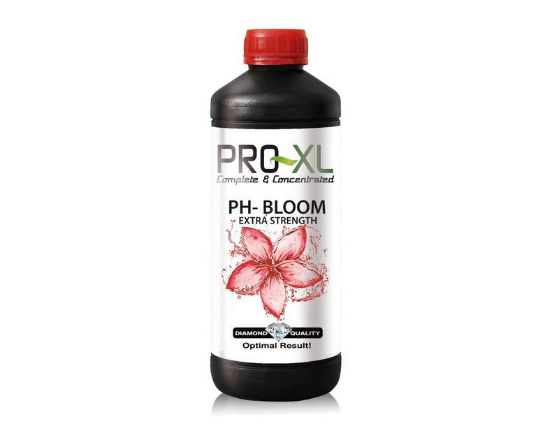 Ph - Bloom