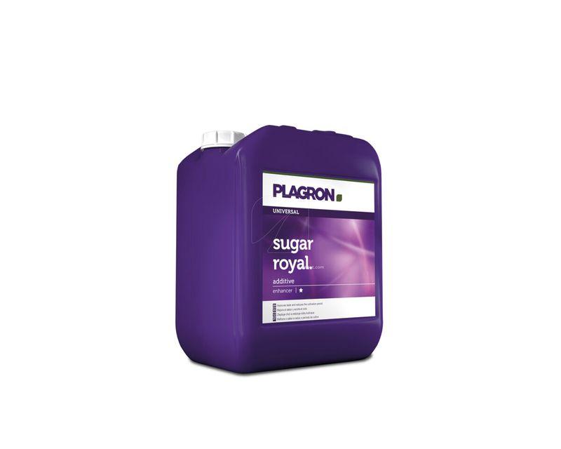 Sugar Royal Plagron 5L