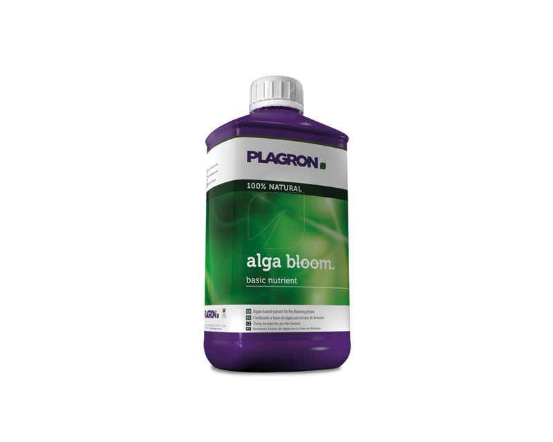 Alba Bloom 1L
