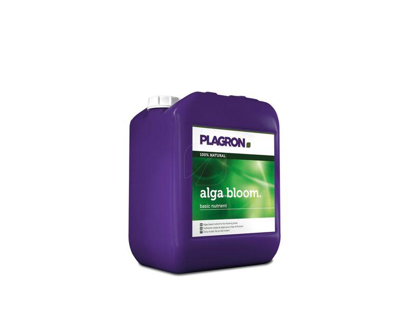Alba Bloom 5L