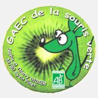 Farine de lentilles vertes Bio