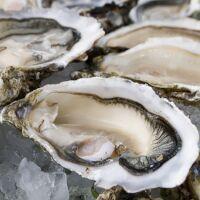 Huîtres spéciales pleine mer de Veules-les-roses n°2 bourriche
