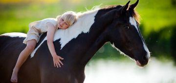 ¿Cuáles son los cuidados que necesita mi caballo?