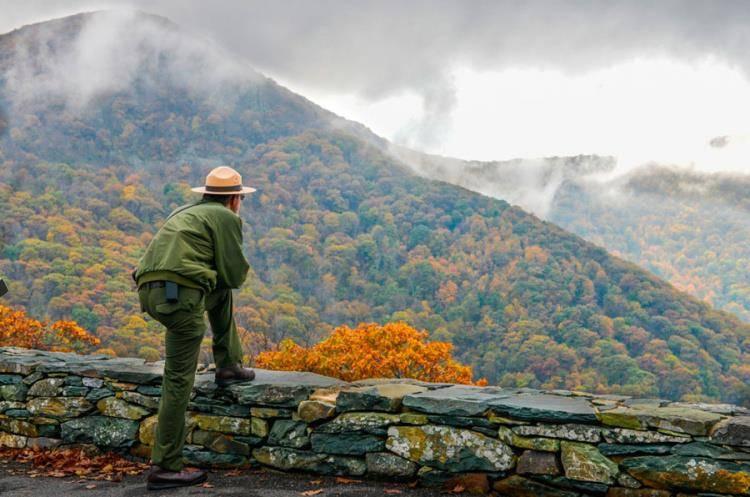 Curso de Conservación de Bosques y Parques Naturales