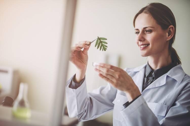Curso de Aromaterapia y Terapias Alternativas