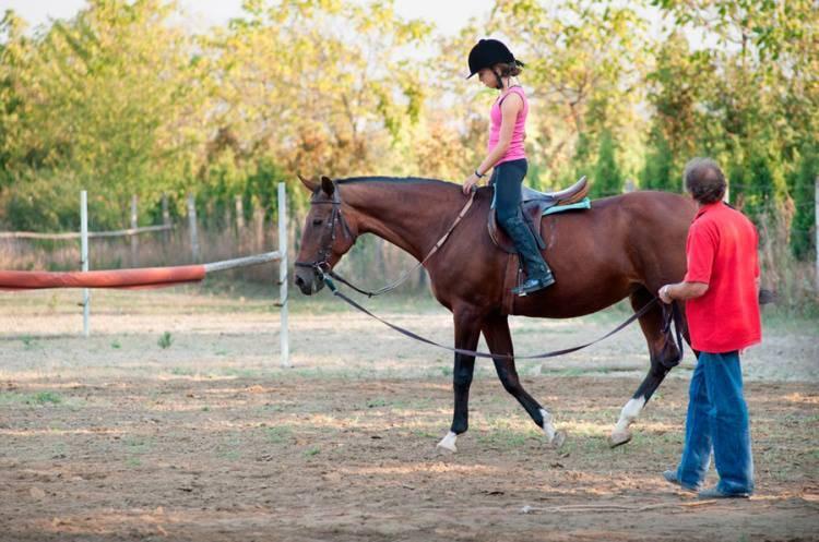 Curso de Monitor de Equitación