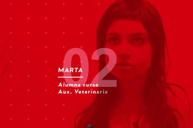 Marta nos da su opinión sobre Implika y sus prácticas en una Clínica Veterinaria
